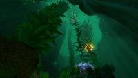 Kelp Forest Deep