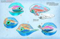 Alex-ries-alex-rainbowfish3