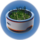 Горшок для растений.png