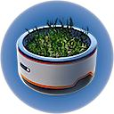 Горшок для растений