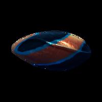 Egg Pinnicarid