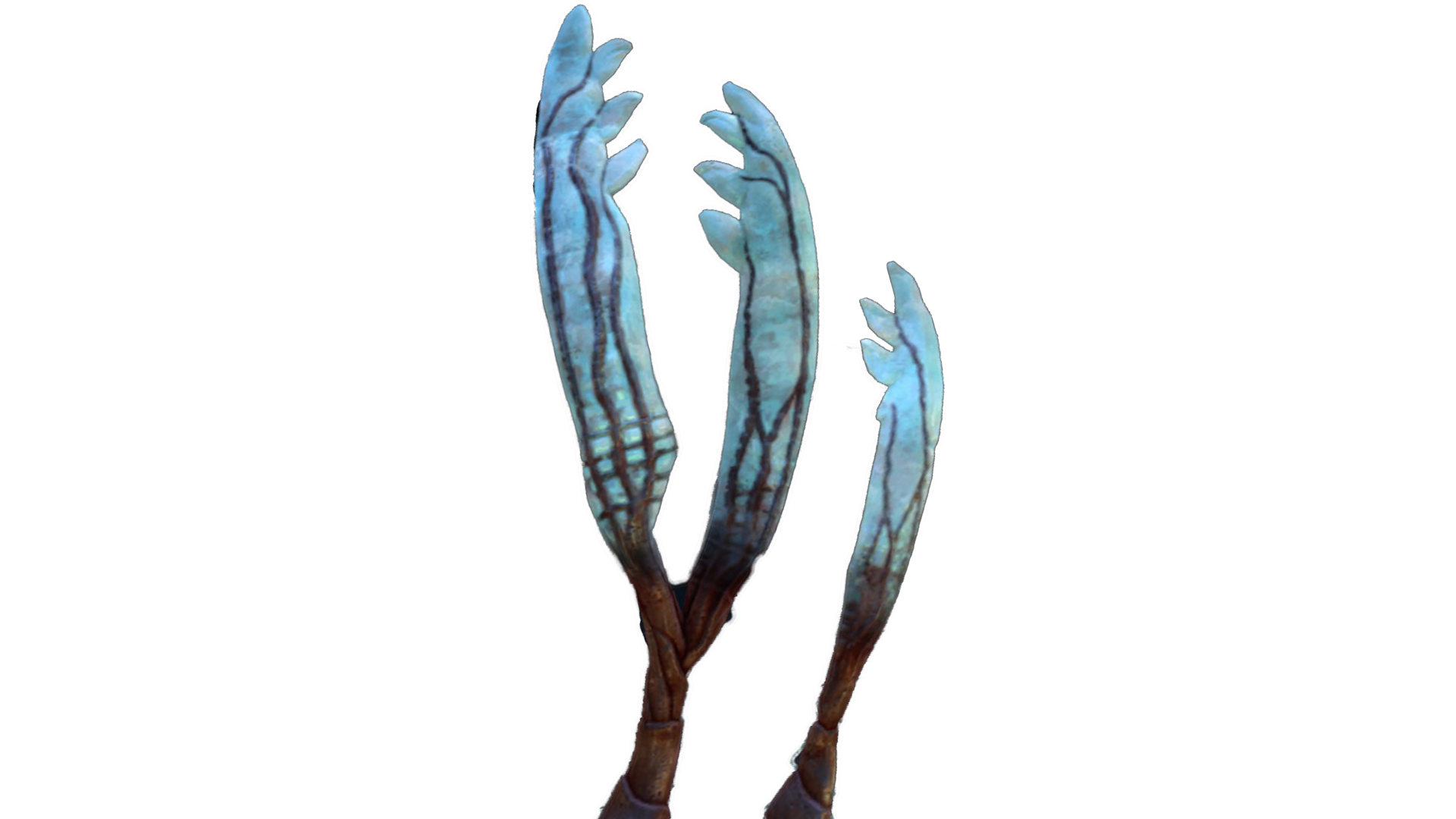 Gabe's Feather