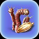 Plante Tigre