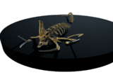 Reaper Leviathan Skeletons