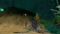 AquariumGalleryNew4