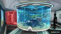 Base Large Aquarium Notes (BZ)
