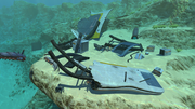 Safe Shallows Small Wreck 4.png