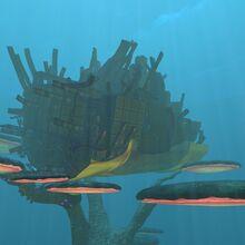 MushroomForestWreck-1.jpg