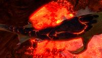 Lava Lizard Shell Closeup