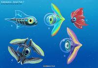Alex-ries-alex-smallfish07