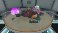 Alien Containment Small Flora