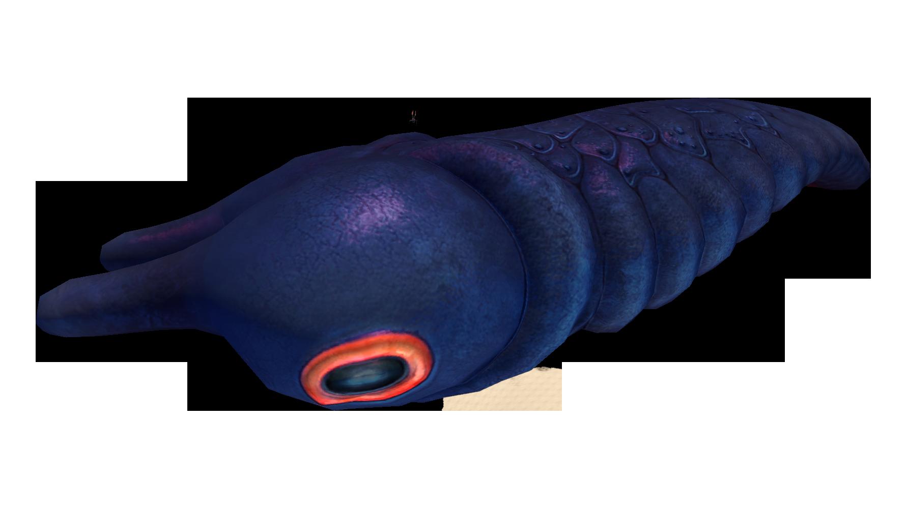 Lava Larva
