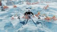 Snowfox Front