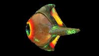 Infected Lava Eyeye