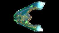 Infected Boomerang