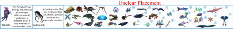 Unclear Placement section.png