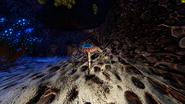 Höhlenkrabbler2