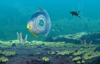 Titan Holefish Poster