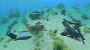 Safe Shallows Small Wreck 1.png