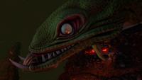 Lava Lizard Face Closeup