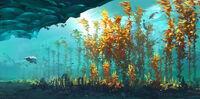 Arctic kelp 08 FINAL (BZ)