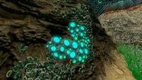 AquariumGalleryNew5