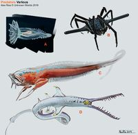 Various Predators Concept