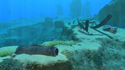 Safe Shallows Small Wreck 2.png
