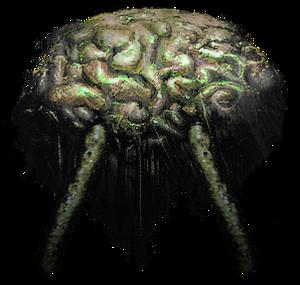 Thalamus Brain.png