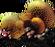 Slime Bacteria.png