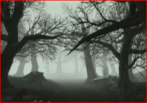 Forest of Bewilderment