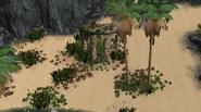 Sload Stone Camp