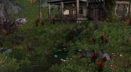 Red Brook Cottage