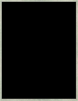 SS blackgaz.png