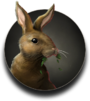Obviouslydeliciousrabbit.png