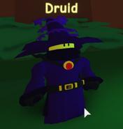 C2Druid