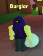 C2Burglar