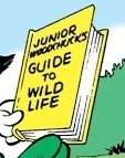 Junior Woodchuck's Guide to Wild Life