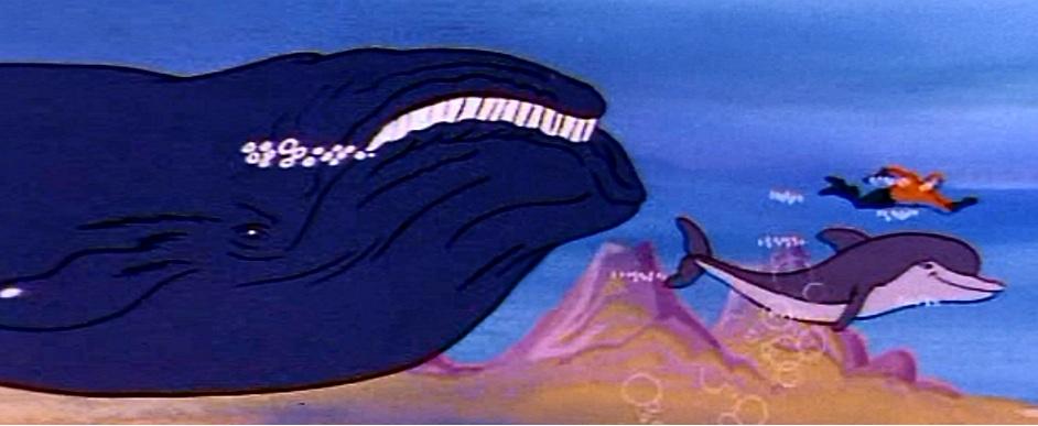 Baleen whale