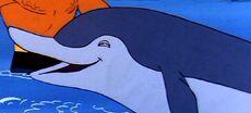 Mother dolphin.jpg