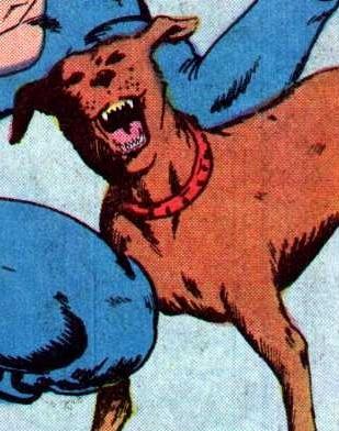 Thor the Thunder Dog