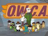 O.W.C.A.