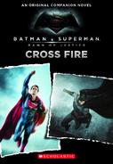 Batman-superman novel