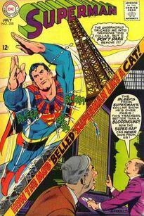 Superman Vol 1 208