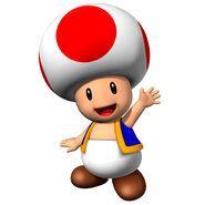 Nsmb-toad