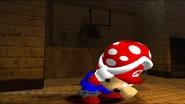 Mario SAW 009