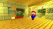 SMG4 If Mario Was in... Minecraft screencaps 12