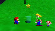 Stupid Mario 3D World 029