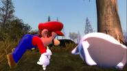 Mario's Big Chungus Hunt 095