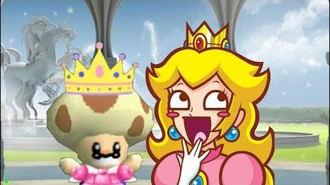 SM64 Guides: Toadsworth's How to - Princess